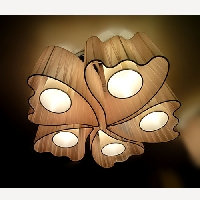 DECORATIVE CEILING LIGHTS